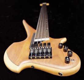 LightWave Bass Pickup System