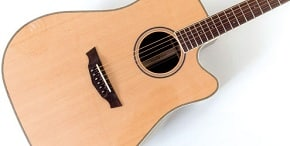 Parkwood PW-510 dreadnought acoustic guitar